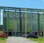 Chiude Il Gigante, dipendenti in rivolta con una petizione